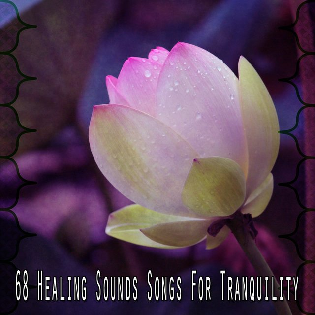 68 Healing Sounds Songs for Tranquility