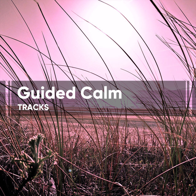 Guided Calm Tracks for Yoga Training