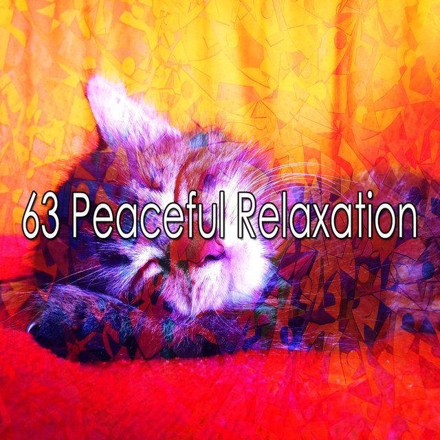 63 Peaceful Relaxation