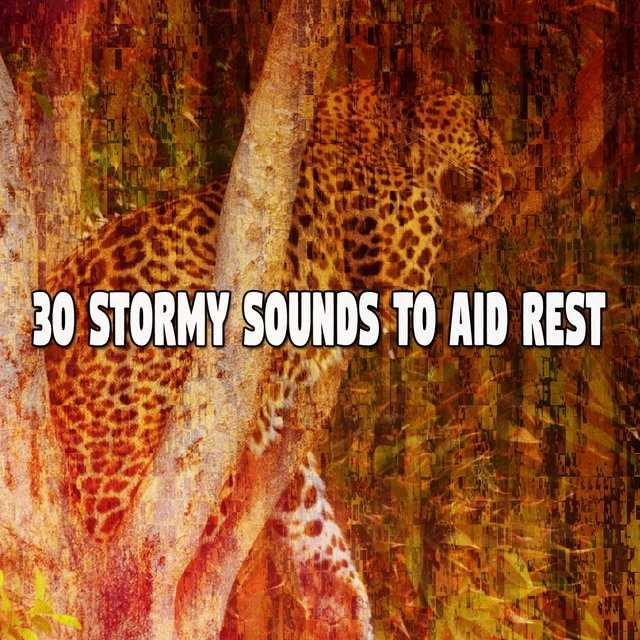 30 Stormy Sounds to Aid Rest