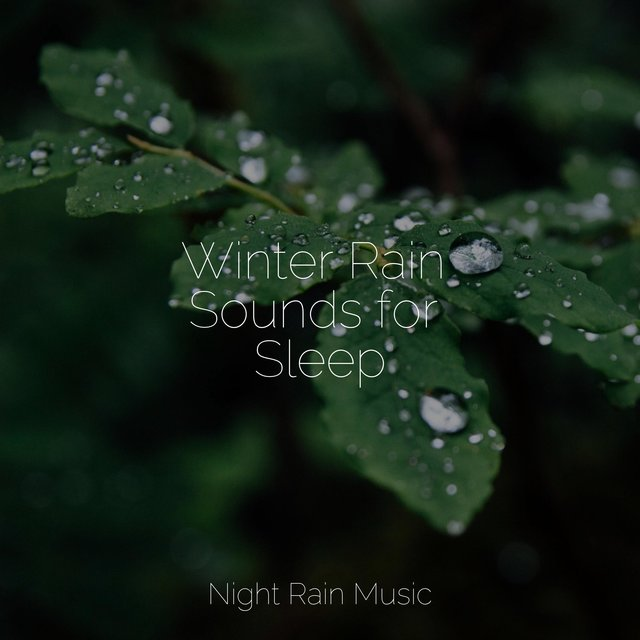 Winter Rain Sounds for Sleep