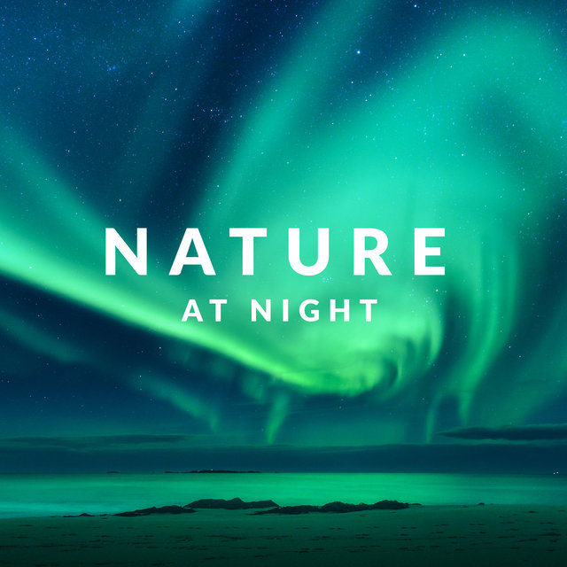 Nature at Night – Music to Sleep with the Sounds of Nature