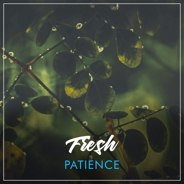 # Fresh Patience