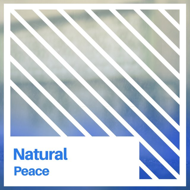 # 1 Album: Natural Peace