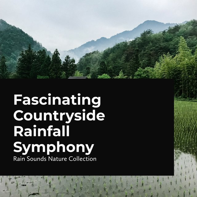 Fascinating Countryside Rainfall Symphony