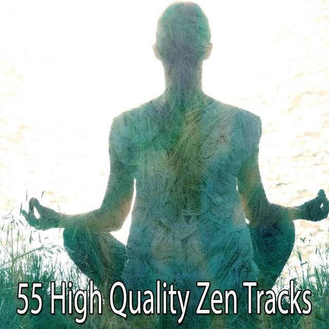 55 High Quality Zen Tracks