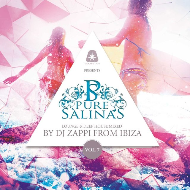 Pure Salinas, Vol. 7 (Compiled by DJ Zappi)