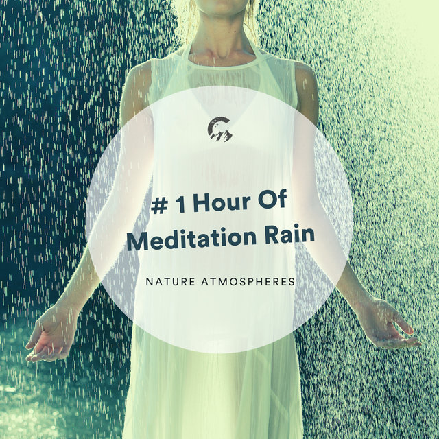 # 1 Hour Of Meditation Rain