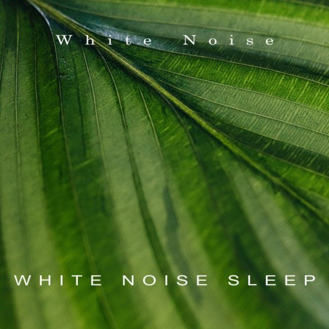 White Noise Sleep