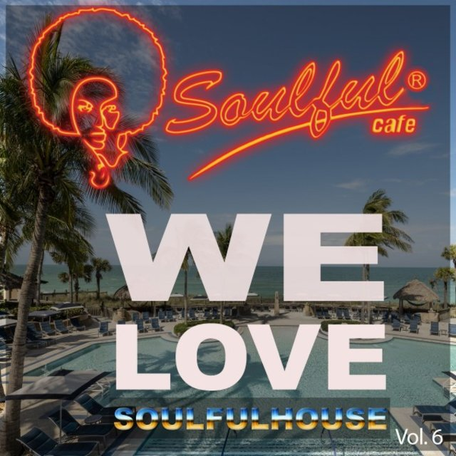 We Love Soulfulhouse, Vol. 6