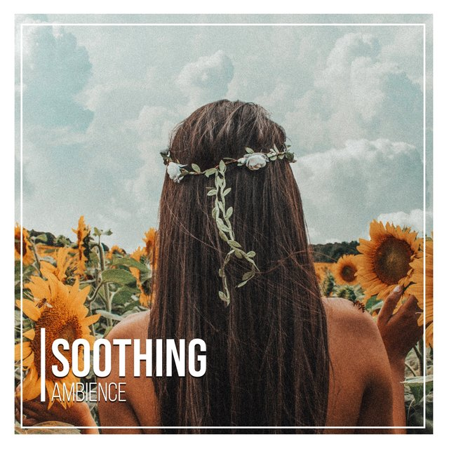 # 1 Album: Soothing Ambience