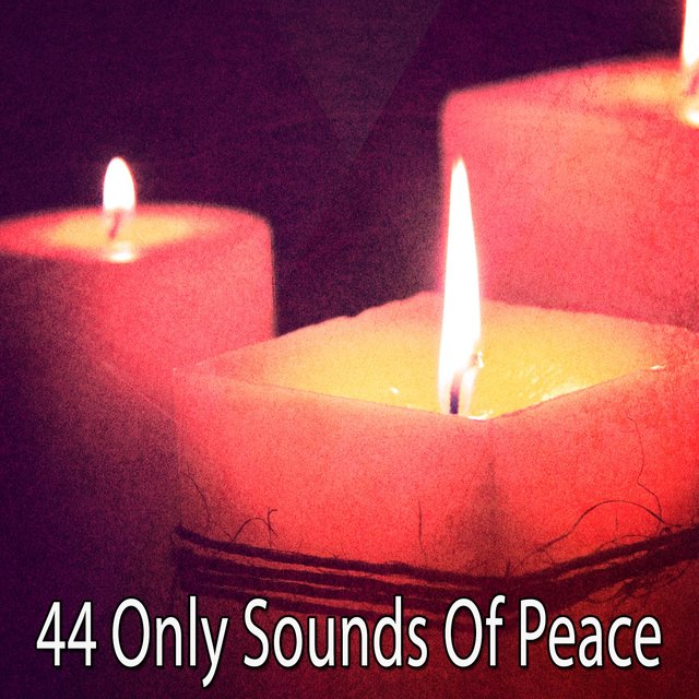 44 Only Sounds of Peace