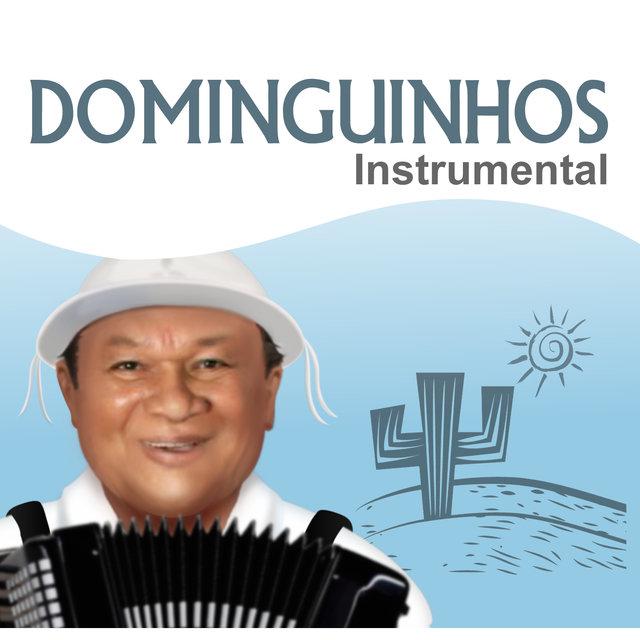 Dominguinhos Instrumental