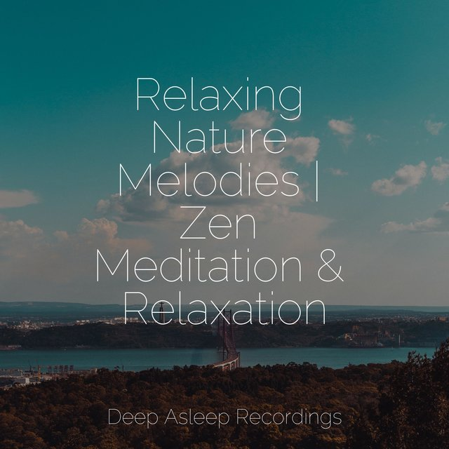 Relaxing Nature Melodies | Zen Meditation & Relaxation