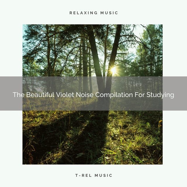 The Beautiful Violet Noise Compilation For Studying