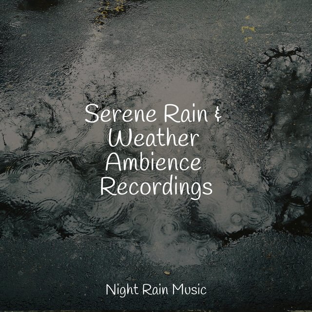 Serene Rain & Weather Ambience Recordings