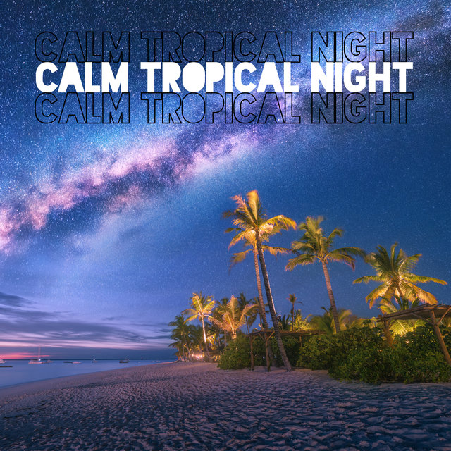 Calm Tropical Night - Ambient Lounge, Chill Out Music, Best Tropical Chill, Chillout Hits