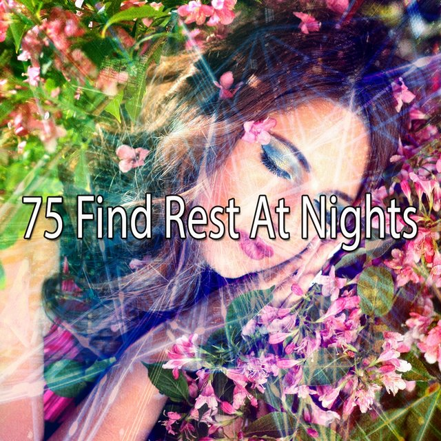 75 Find Rest at Nights
