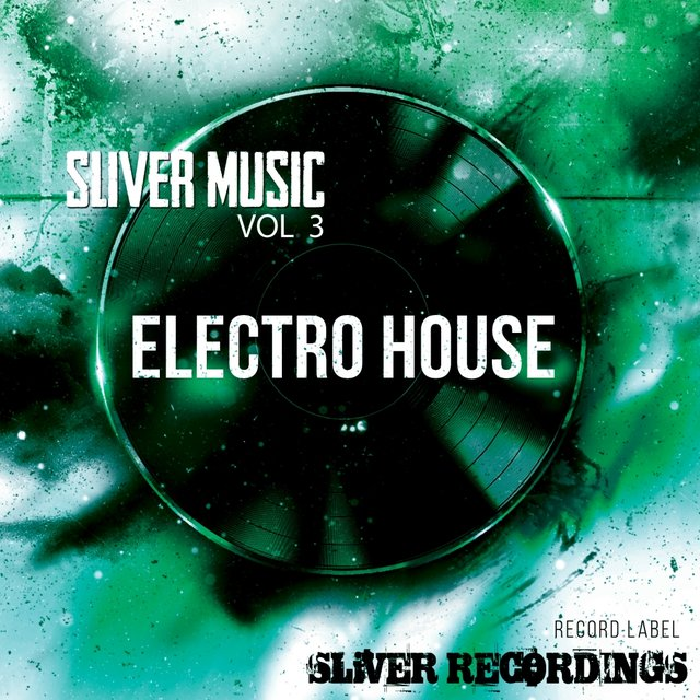 Sliver Music: Electro House, Vol.3