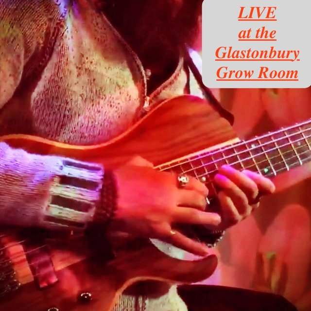 Live at the Glastonbury Grow Room