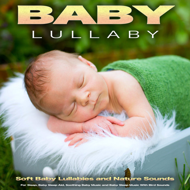 Baby Lullaby: Soft Baby Lullabies and Nature Sounds For Sleep, Baby Sleep Aid, Soothing Baby Music and Baby Sleep Music With Bird Sounds