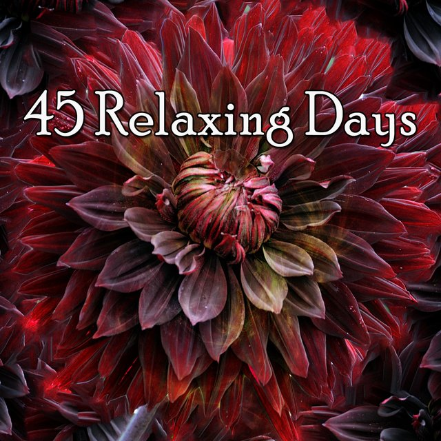 45 Relaxing Days