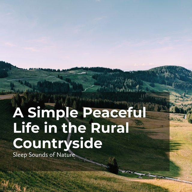 A Simple Peaceful Life in the Rural Countryside