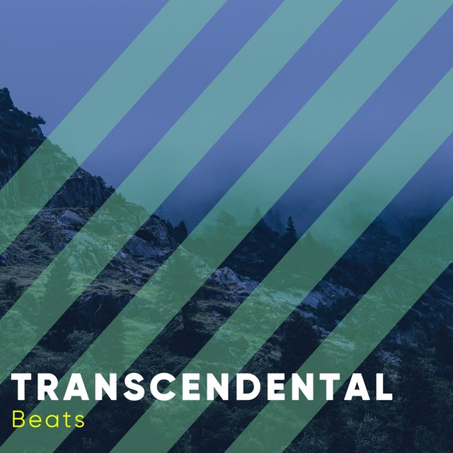 Transcendental Library Beats