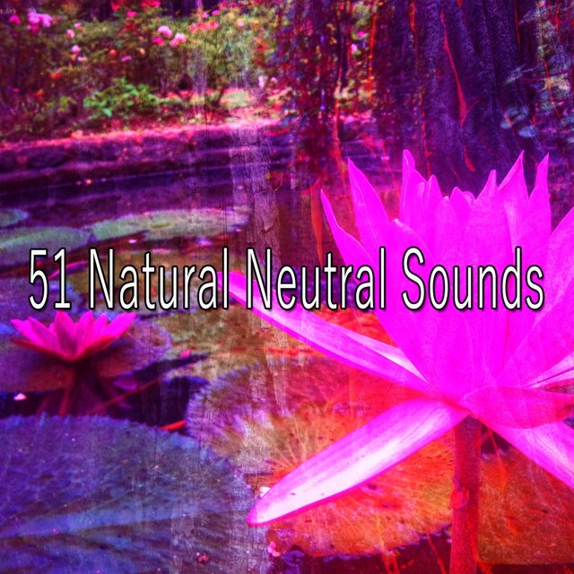 51 Natural Neutral Sounds