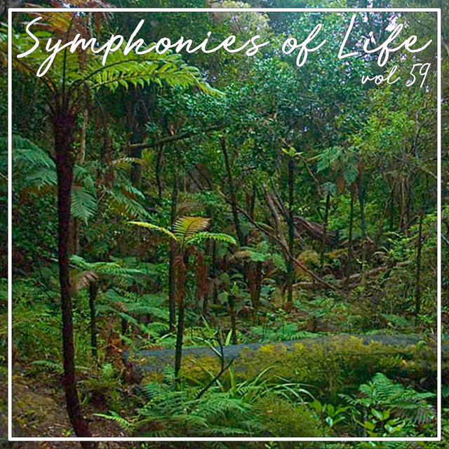 Symphonies of Life, Vol. 59 - Zemlinsky; The King Kandaules