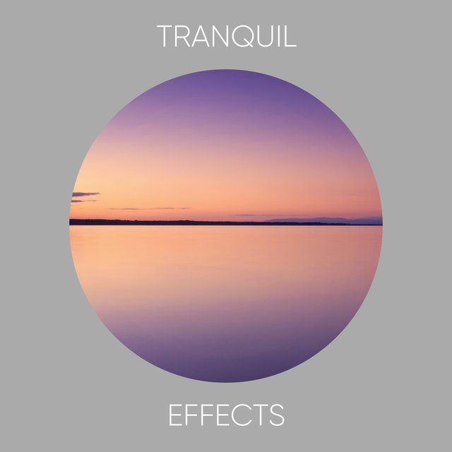 # 1 Album: Tranquil Effects