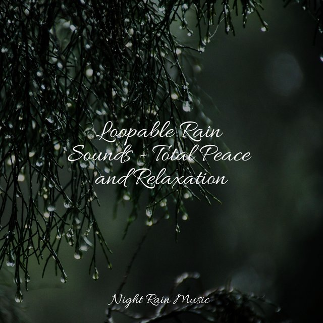 Loopable Rain Sounds - Total Peace and Relaxation