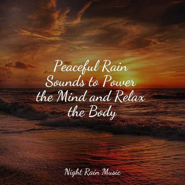Peaceful Rain Sounds to Power the Mind and Relax the Body