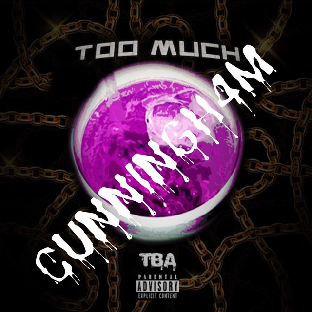 Too Much (Remix) [feat. Cunningh4m]