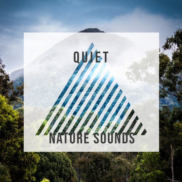 Quiet Nature Sounds, Vol. 8
