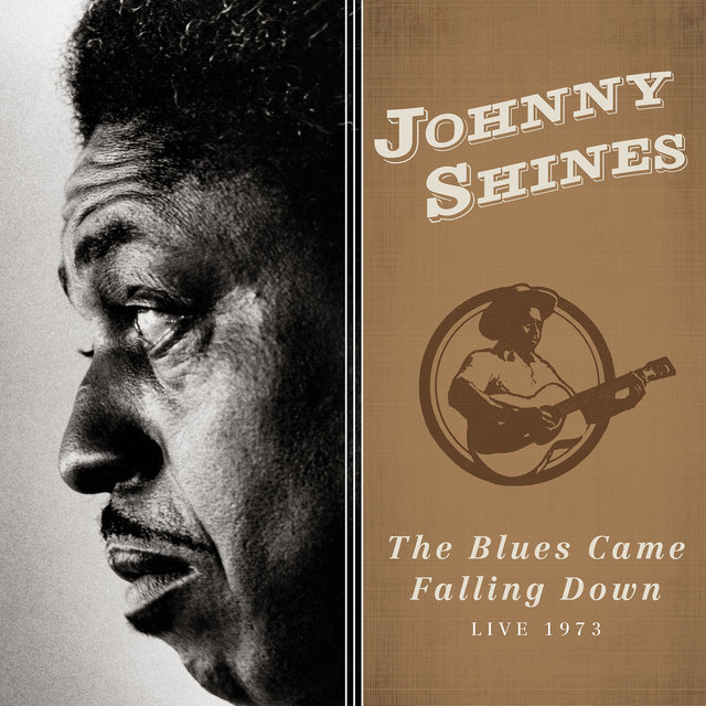 The Blues Came Falling Down: Live 1973