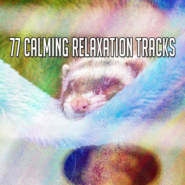 77 Calming Relaxation Tracks