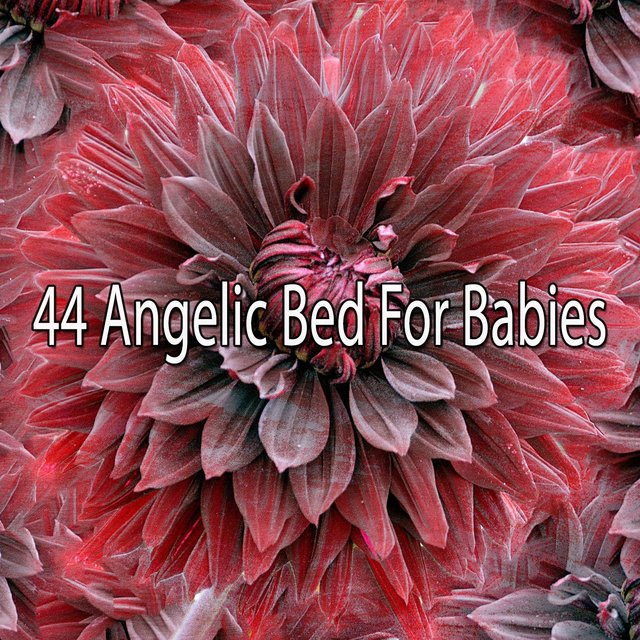 44 Angelic Bed for Babies