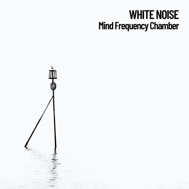 White Noise: Mind Frequency Chamber