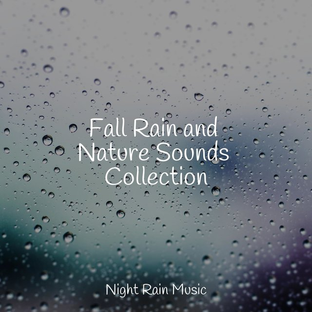 Fall Rain and Nature Sounds Collection