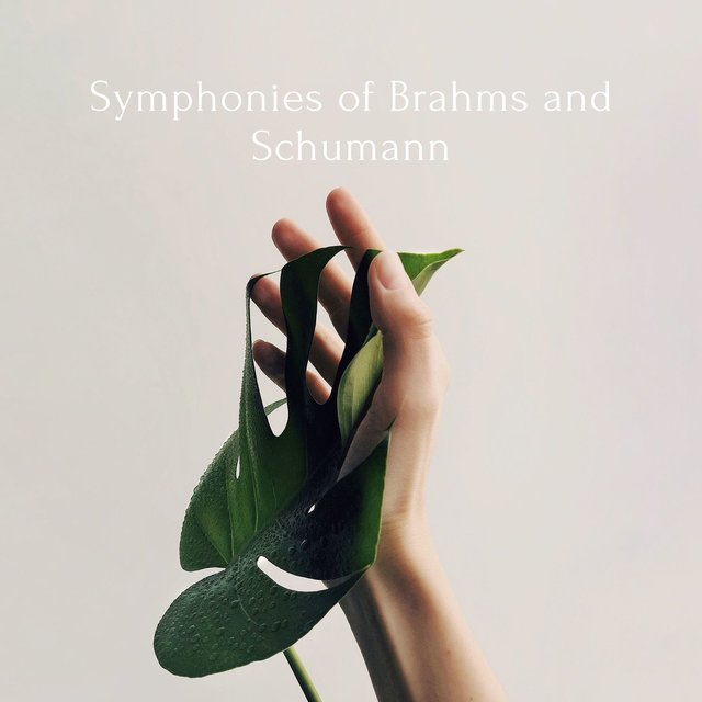 Symphonies of Brahms and Schumann