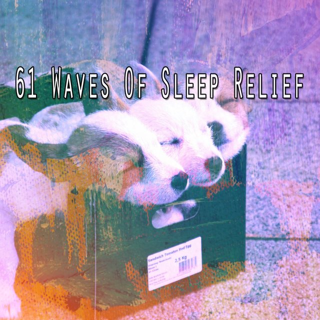 61 Waves of Sleep Relief