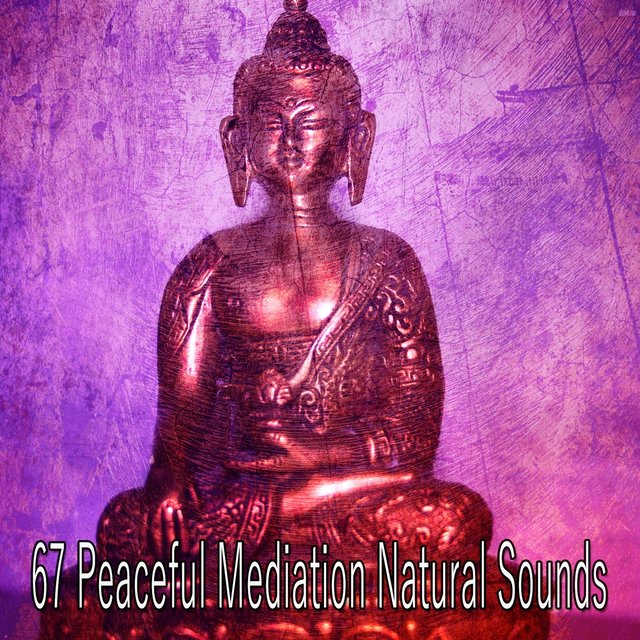 67 Peaceful Mediation Natural Sounds