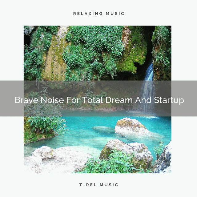 Brave Noise For Total Dream And Startup