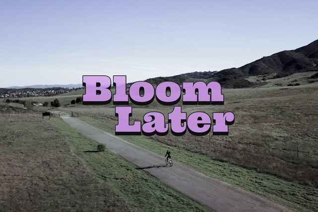 Bloom Later (Official Video)