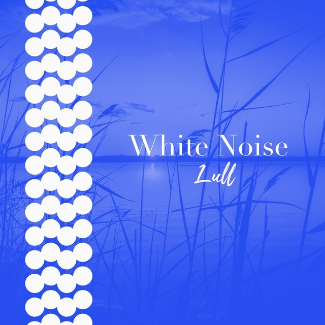 # 1 Album: White Noise Lull