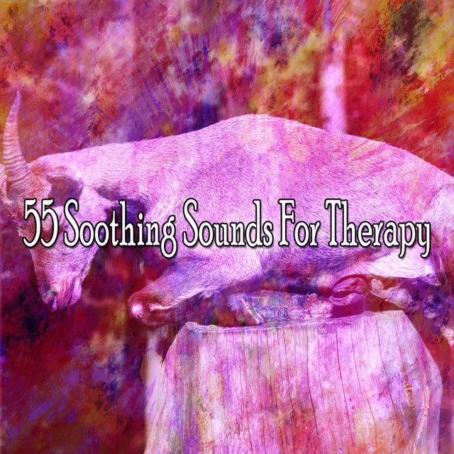 55 Soothing Sounds for Therapy