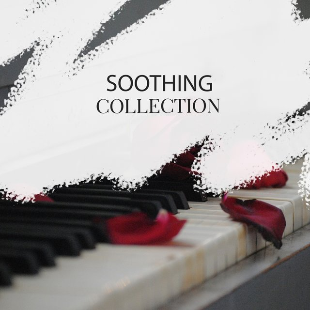 Soothing Ambience Collection