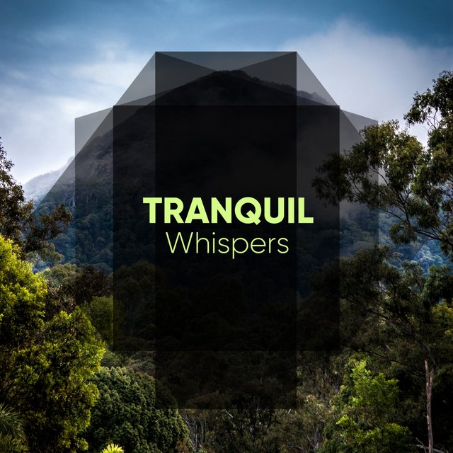 # 1 Album: Tranquil Whispers