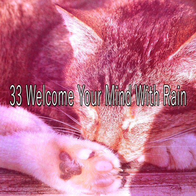 33 Welcome Your Mind with Rain
